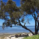 Coodanup Foreshore by lezvee