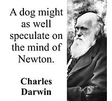 A Dog Might As Well Speculate - Charles Darwin Photographic Print