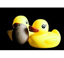 Two Rubber Duckies and One Egg Photographic Print