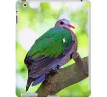Colourful  iPad Case/Skin