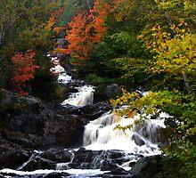 Duchesnay Falls by Janet Gosselin