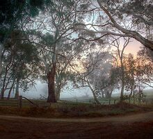 Misty Sunrise, Monkhouse Road, Woodside by Mark Richards