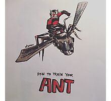Ant Man - How To Train Your Ant Photographic Print