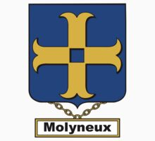 Molyneux Coat of Arms (English) Kids Clothes