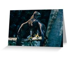 Brown Eagle Greeting Card