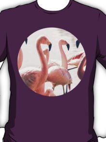 Pink Flamingo Flock T-Shirt