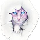 'Purple Cat' By Scot Howden by Scot Howden