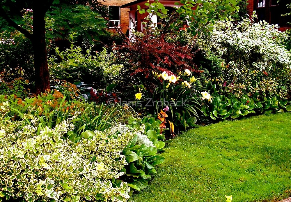 A Summer Border by ©Janis Zroback