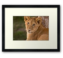 Ready For My Close Up 2 Framed Print