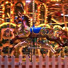 Carousel Colours by Vicki Spindler (VHS Photography)