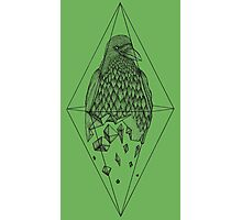 Geometric Crow in a diamond (black and white version) Photographic Print