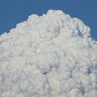 Pyrocumulus Cloud, King Fire, El Dorado County by Laurie Puglia