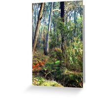 Lush Color of Winter Greeting Card