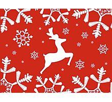 Snowy Reindeer Photographic Print