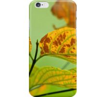 Touched By Autumn iPhone Case/Skin