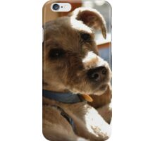 Joey in the Light iPhone Case/Skin
