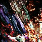 30 doradus_1411002.png by Joshua Bell