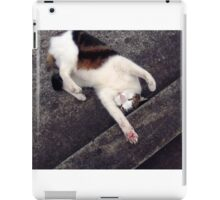 Max at play  iPad Case/Skin