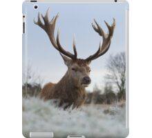 Christmas Stag 2 iPad Case/Skin