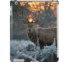 Christmas stag 3 iPad Case/Skin