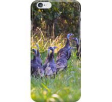 A Rafter Of Wild Turkeys    iPhone Case/Skin