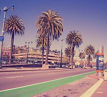 San Francisco Palm Trees - C A  L I F  O R  N I A by robertomusictv