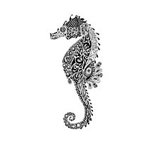 Seahorse Doodle Photographic Print