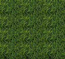 Grass by papabuju