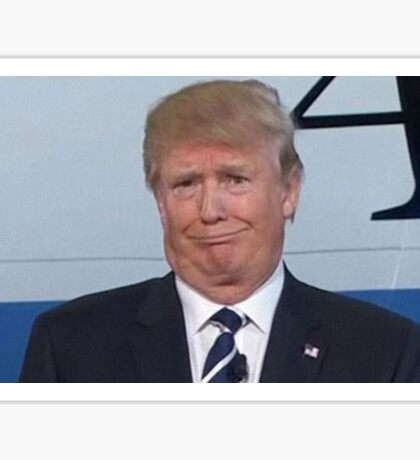 Don't Use This Image of Donald Trump, Please Sticker