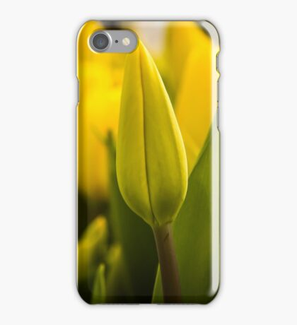 Let Our Own Light Shine  iPhone Case/Skin