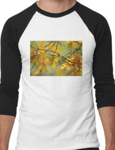 Fall Leaves VI Men's Baseball ¾ T-Shirt