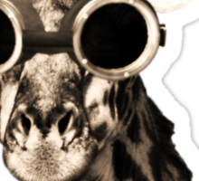 Giraffe With Steampunk Sunglasses Goggles Sticker