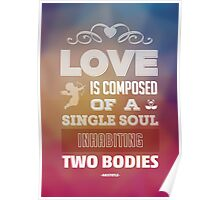 Single Soul in Two Bodies Poster