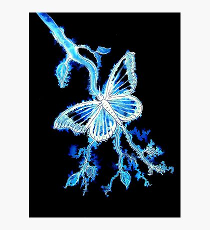 Butterfly Electric Blues Photographic Print