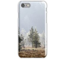 18.9.2014: Pine Trees, Autumn Morning iPhone Case/Skin