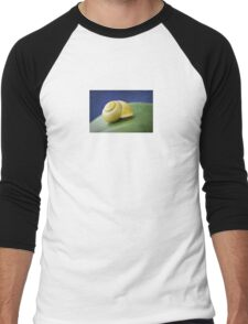 Snail with shell on leaf in detail Men's Baseball ¾ T-Shirt