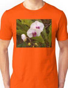 Orchid, Phalanopsis. Unisex T-Shirt