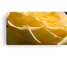 Abstract Waves Canvas Print