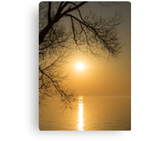 Framing the Golden Sun Canvas Print