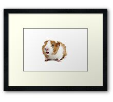 What a surprise! Framed Print