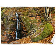 Waterfall in the autumn forest Poster