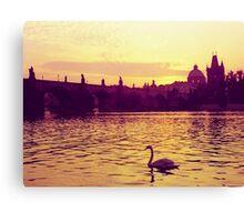 Swan, The Charles Bridge (Karlův Most) Prague, Kodachrome 64 Canvas Print