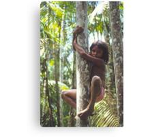 Climbing Trees Canvas Print