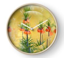 Orange lilly flowers Fritillaria imperialis Clock