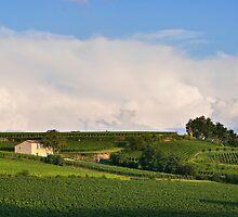 Saint-Emilion France by James  Key