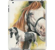 American Paint iPad Case/Skin