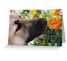 Sniff the Flowers Greeting Card