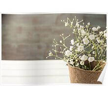A bouquet of gypsophila flowers Poster