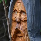 Faces in the Woods #2 by Heather Crough