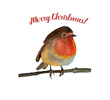 Merry Christmas! Jolly Robin in Watercolour Photographic Print